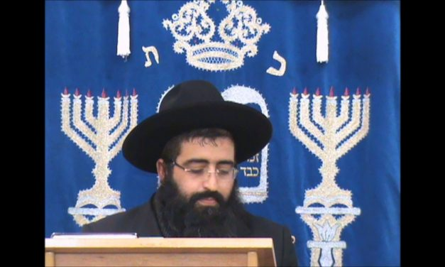 פרשת בהר בחוקותי עמל תורה והקשר לברית מילה הרב שלמה יעקב ביטון